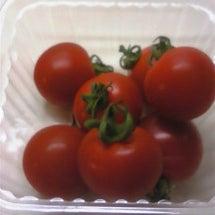 ミニトマトのチカラ