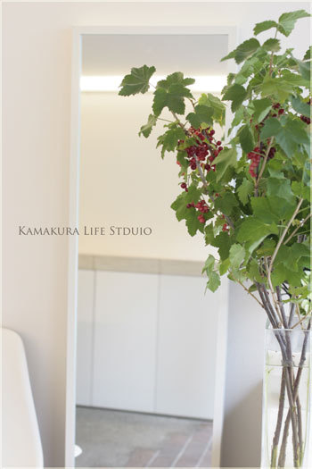 Life Studio