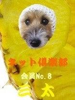 $三&心JRTぶらざ~ず☆