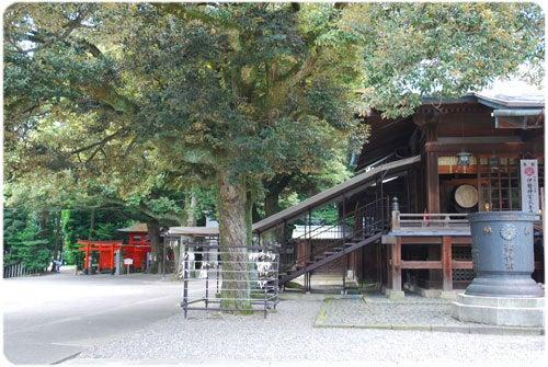 ひばらさんの栃木探訪-ひばらさんの栃木探訪 明神の水