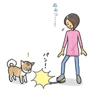 あたち柴犬 抹茶だヨ!(C)なかむら まんぼう