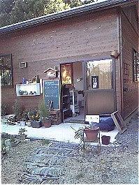 Taoちゃんのブログ-自然物雑貨屋