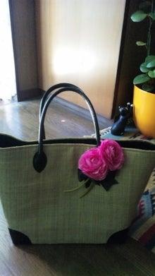 オカメインコのももちゃんと花教室と旅日記-110717_112040.jpg