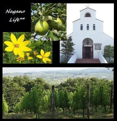 Nagano Life**-教会