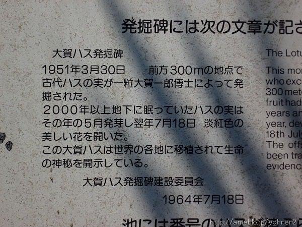 P1070164