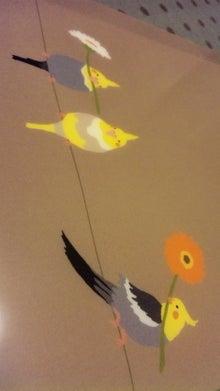 オカメインコのももちゃんと花教室と旅日記-110720_203342.jpg