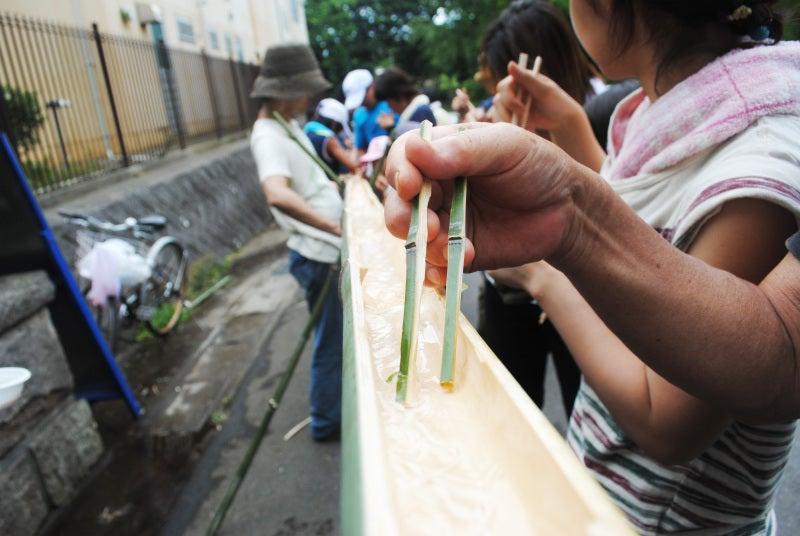 tsumiki/つみき設計施工社「ともにつくる工務店へ」:日々の出会いと感動を記録します