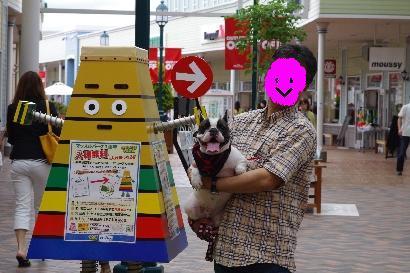 才色兼備犬・・・ドット♀
