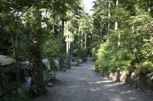 道志村『隠れ家的』ブログ-とやの沢サイト