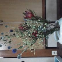 7月30日のお花