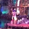 麦わら海賊団 in USJの画像