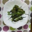 京都の野菜