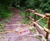 タロイモ倶楽部@ママと息子と山歩き-20110811105518.jpg
