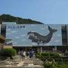 くじら浜公園 和歌山県太地町立くじらの博物館の画像