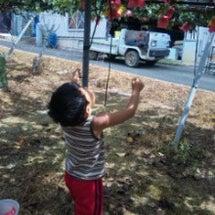 梨、ぶどう狩り