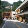飛瀧神社 那智の滝 那智の大瀧(和歌山県那智勝浦町)の画像