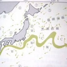 海流と水産物の汚染