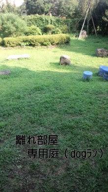 ☆とみちんとワン⑦姉弟のlife☆-110812_1546~010001.jpg