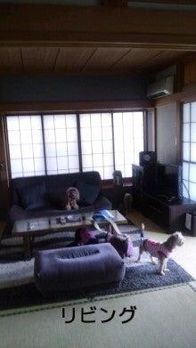 ☆とみちんとワン⑦姉弟のlife☆-110811_1546~020001.jpg
