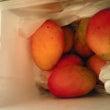 甘っ~い!完熟マンゴ…