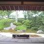 今朝は浄明寺の茶室に…