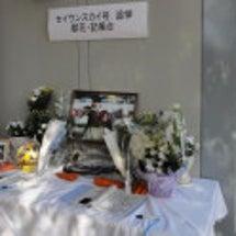 2011年札幌記念