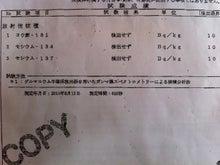 $果樹園ブギウギ-福島 阿部果樹園 和ナシの検査結果