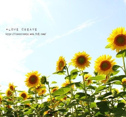 *LOVE CREATE