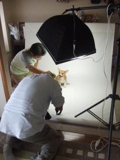 こむぎのママのブログ-20110823b
