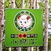 中国火鍋専門店 小肥羊 赤坂店/フカヒレ&コレーゲンボールの美健コースでお肌プルプル!の画像