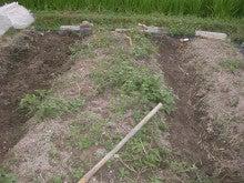 耕作放棄地をショベル1本で畑に開拓!週2日で10時間の野菜栽培の記録 byウッチー-110823畝・畝間交換01