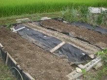 耕作放棄地をショベル1本で畑に開拓!週2日で10時間の野菜栽培の記録 byウッチー-110823メイン畑空き畝天地返し01