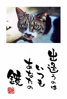 $琉球ドラゴンアート-ポストカード2004