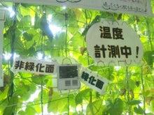 GECS壁面緑化班のブログ