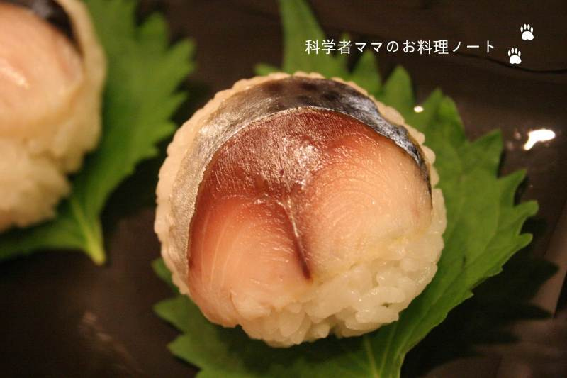 鯖 作り方 しめ