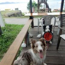 琵琶湖に行ってきたよ…