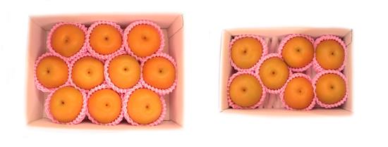$ふくしま・ふるさとフルーツ便のブログ-なし箱サンプル