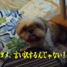 あっつい!!(*゜▽…