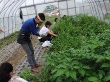 北の農業42年目の日記! 中村農園