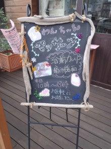 トリミングサロン横浜中区 コムズドッグの毎日~vol.2~