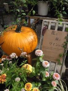 hanamidori-ハナミドリ-