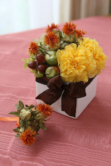 $JOSHURA  FLOWERS-safflower①