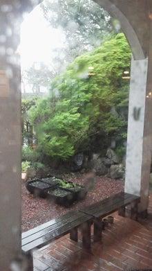 カクタスハウスの料理教室&無農薬野菜-2011092114200000.jpg
