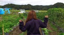$新米『農GAL』、在来種育ててます。