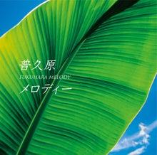 $比屋定篤子 亜熱帯日和ブログ版
