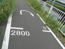 芝川サイクリングロード | とんざのぶろぐ
