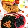 今日のお弁当9.22の画像