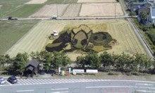 2011年度「第3回福島潟田んぼアート」