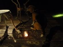 古材流通熊本店のブログ-マッキとろうそくの明かり