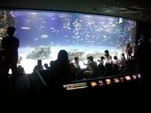 横浜! 世界一周セラピスト 静 慶光のブログ